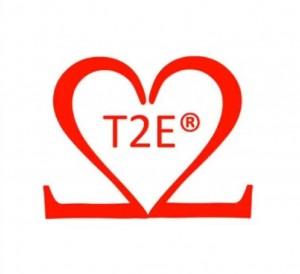 logo T2E