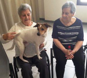 terapia asistida con animales taa