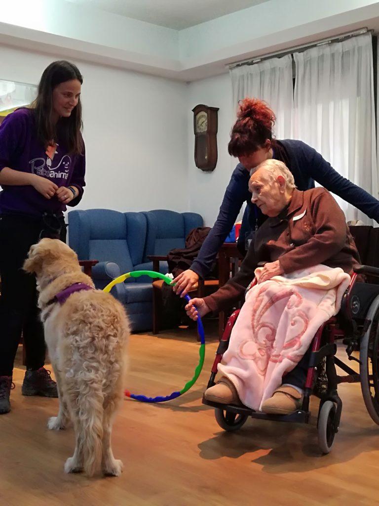 terapia asistida con animales perros albertia las palmeras residencia mayores azuqueca henares