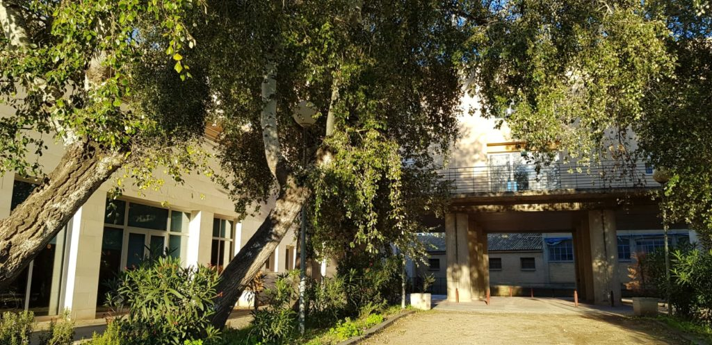 residencia mayores de alagon albertia aniversario iass