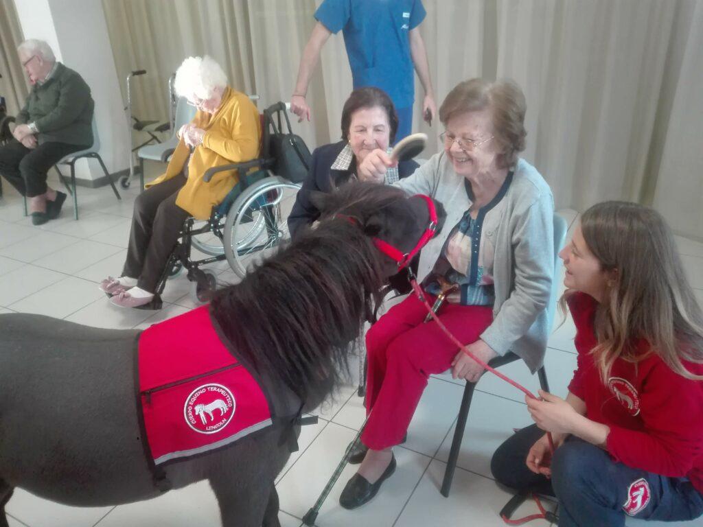 terapia asistida con caballos residencia de mayores albertia valle de la oliva majadahonda