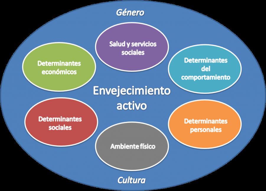 determinantes envejecimiento activo organizacion mundial de la salud oms albertia residencias mayores