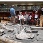 residencia de villaverde albertia plata y castañar mayores museo geominero