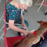 terapia asistida con animales residencia de mayores albertia ciempozuelos las vegas