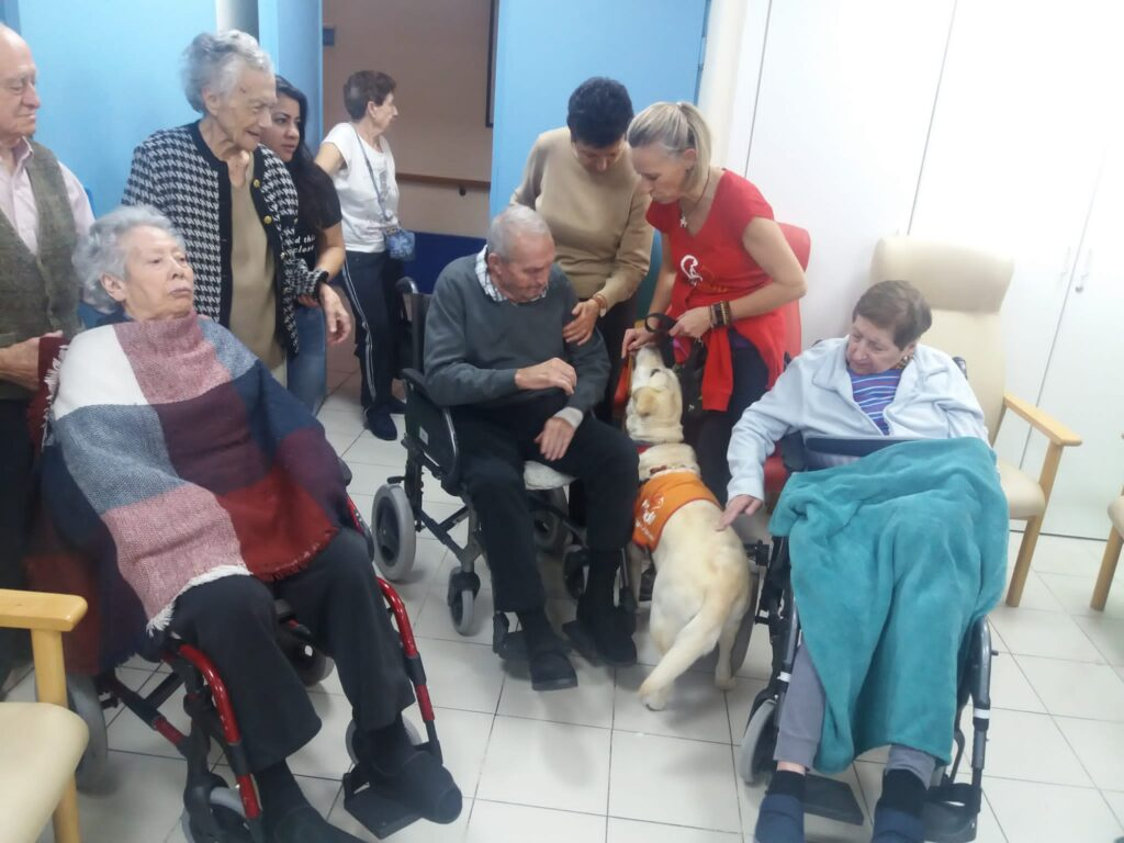 apartamentos albertia mirasierra terapia con animales