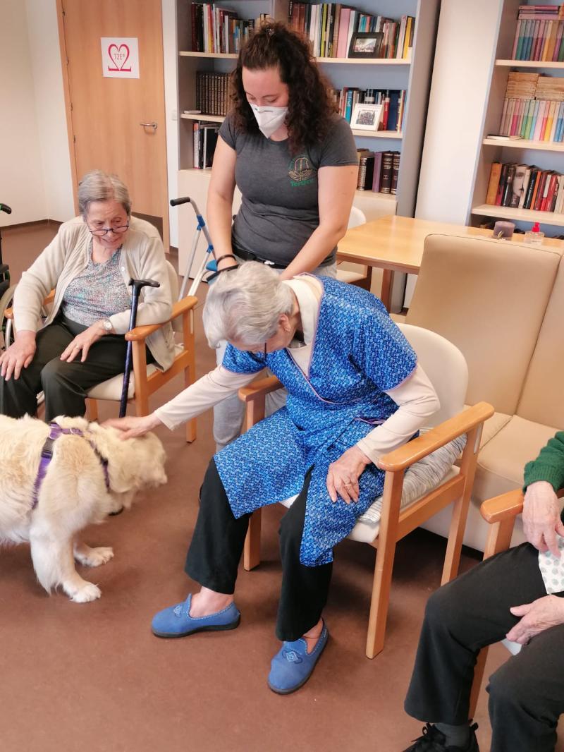 Terapia con animales en residencia Albertia Lugo